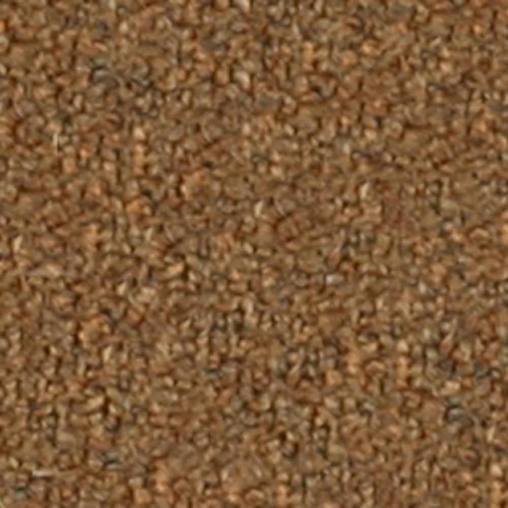 Carpet Sample - Bottom Line 26 - In Color Spice 8 in. x 8 in.