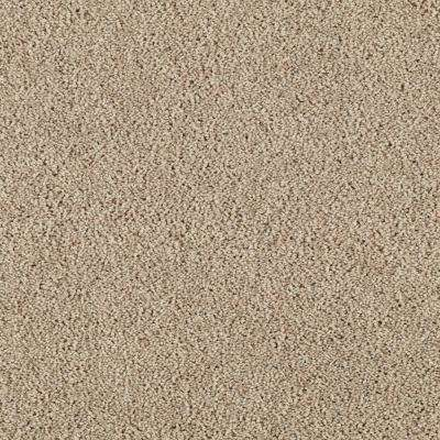 Carpet Sample-Lucky Ticket - Color Nomad Texture 8 in. x 8 in.