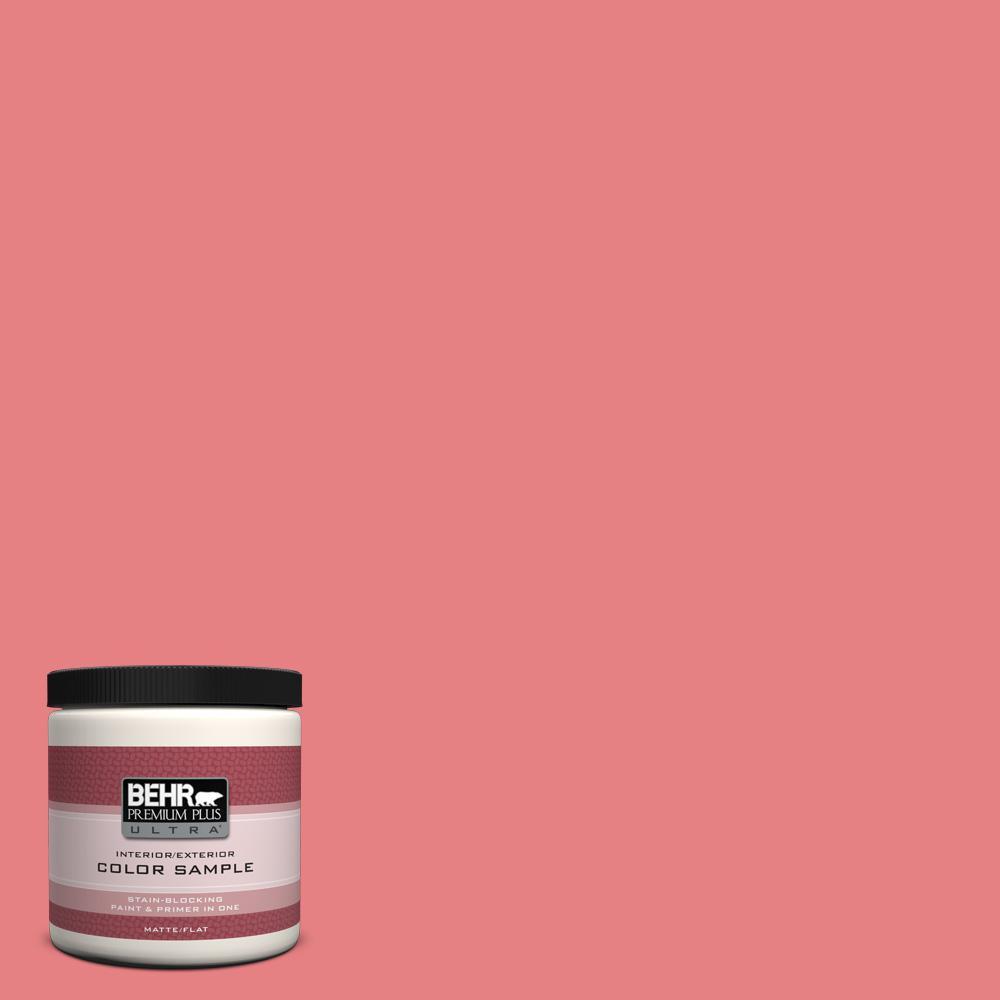 8 oz. #P170-4 Sugar Poppy Interior/Exterior Paint Sample