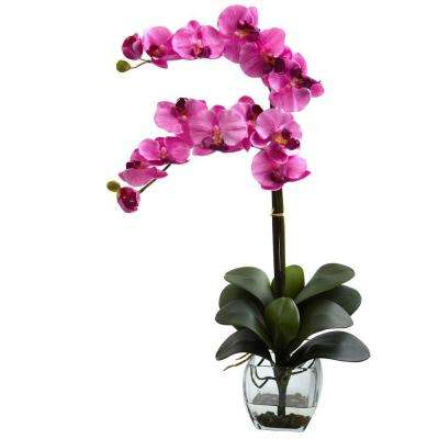 Double Phalaenopsis Orchid with Vase Arrangement in Mauve