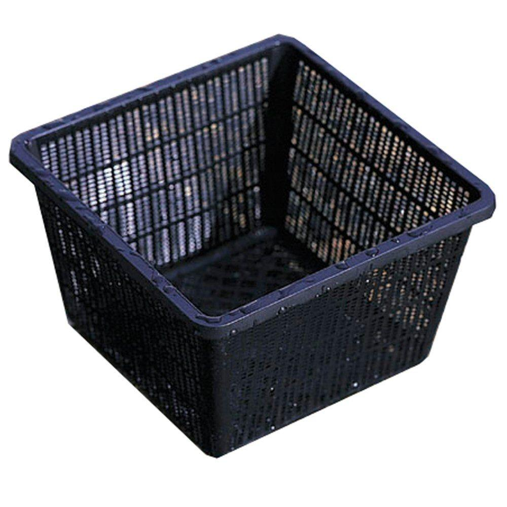 Beckett 10 In X Plastic Water Garden Basket