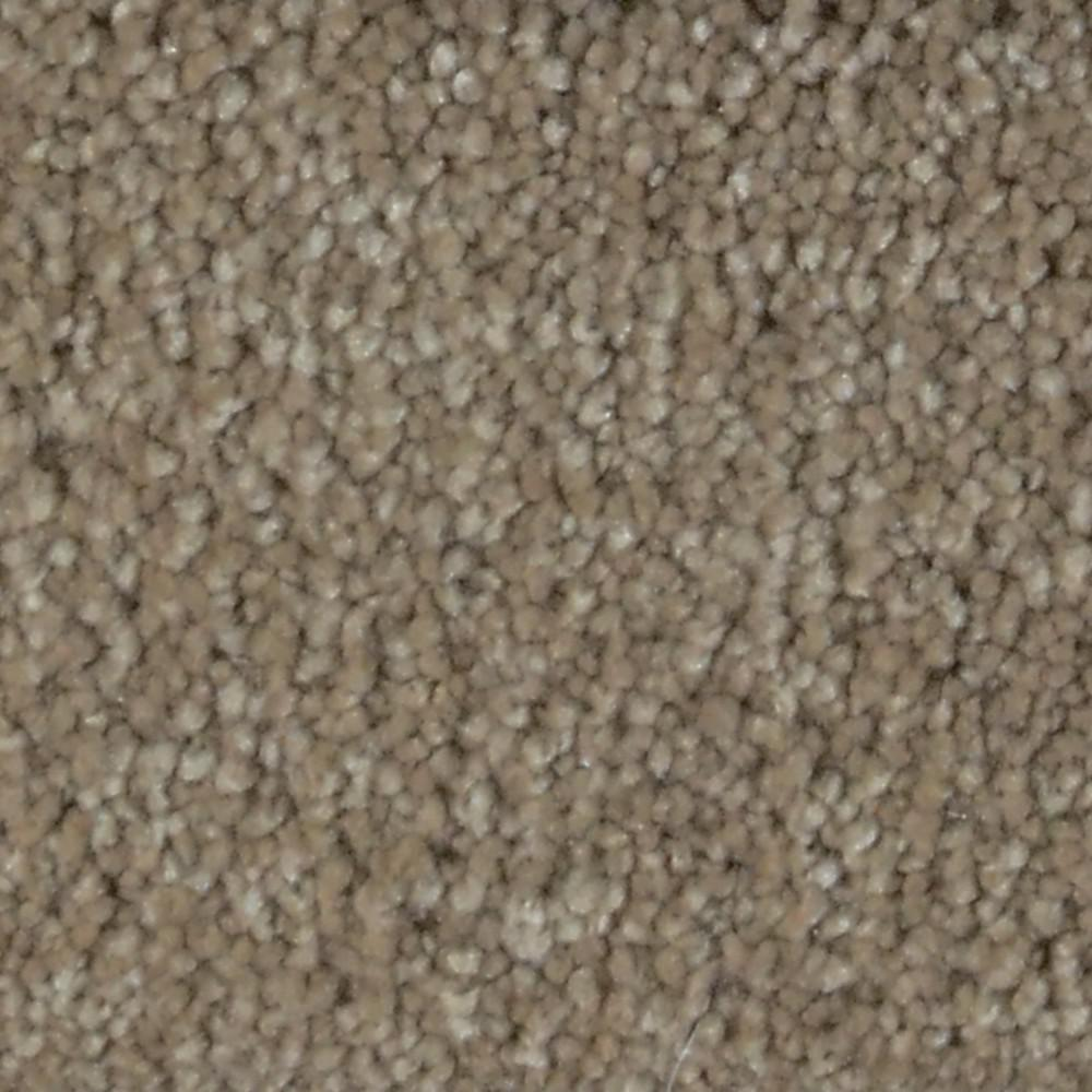 Home Decorators Collection Spicework I - Color Norwalk Texture 12 ft. Carpet