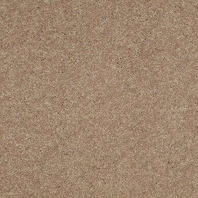 Carpet Sample - Brave Soul II 12 - In Color Garbanzo 8 in. x 8 in.