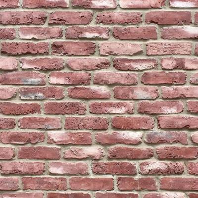 Old Chicago Vino 8.20 in. x 2.50 in. Thin Brick 10.76 sq. ft. Flats Manufactured Stone Siding