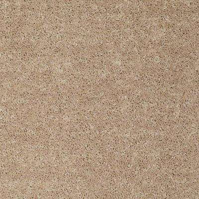Carpet Sample - Alpine 12 - In Color Elegance 8 in. x 8 in.