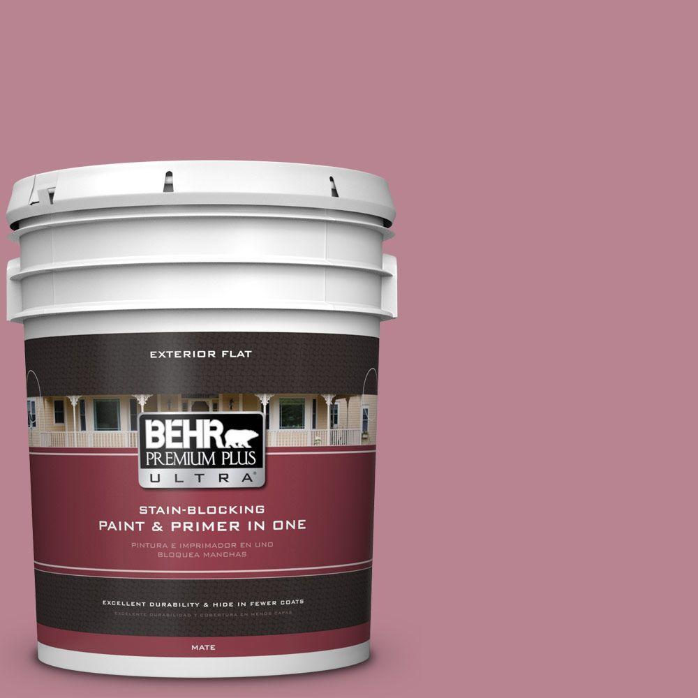 5-gal. #BIC-19 Berry Blush Flat Exterior Paint