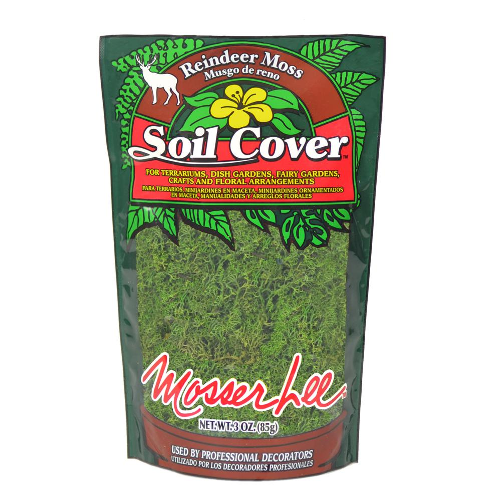 Mosser Lee 3 oz. Reindeer Moss in Dark Green