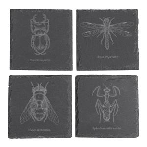 Click here to buy  Halloween Insect Slate Coasters.