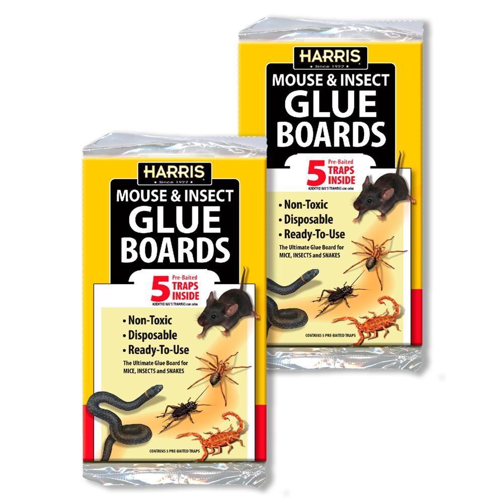 Pest Glue Board, (10-Pack)