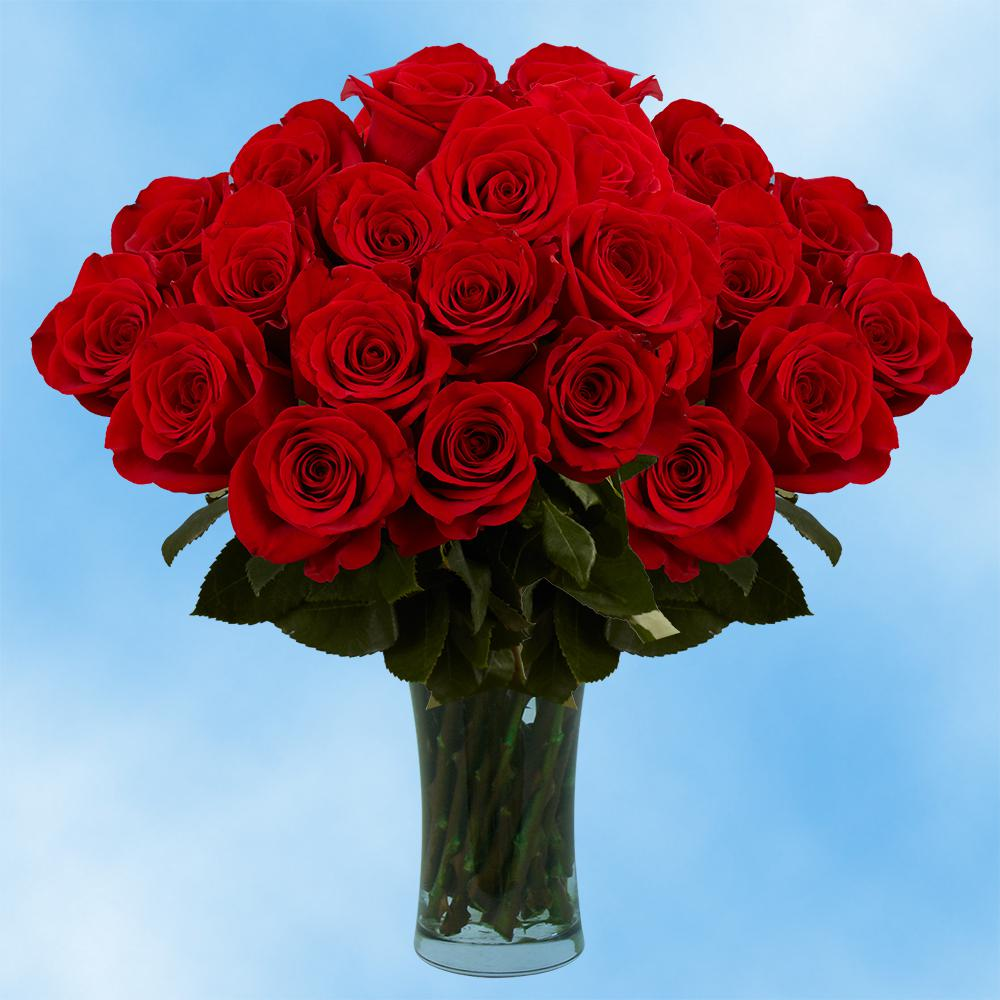 Red flower bouquets garden plants flowers the home depot fresh valentines day red roses 75 extra long stems izmirmasajfo