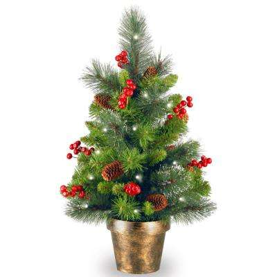 24 in. Crestwood Spruce Tree with Battery Operated Warm White LED Lights
