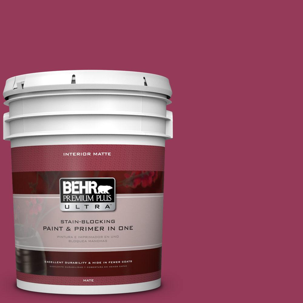 5 gal. #110B-7 Raspberry Pudding Flat/Matte Interior Paint