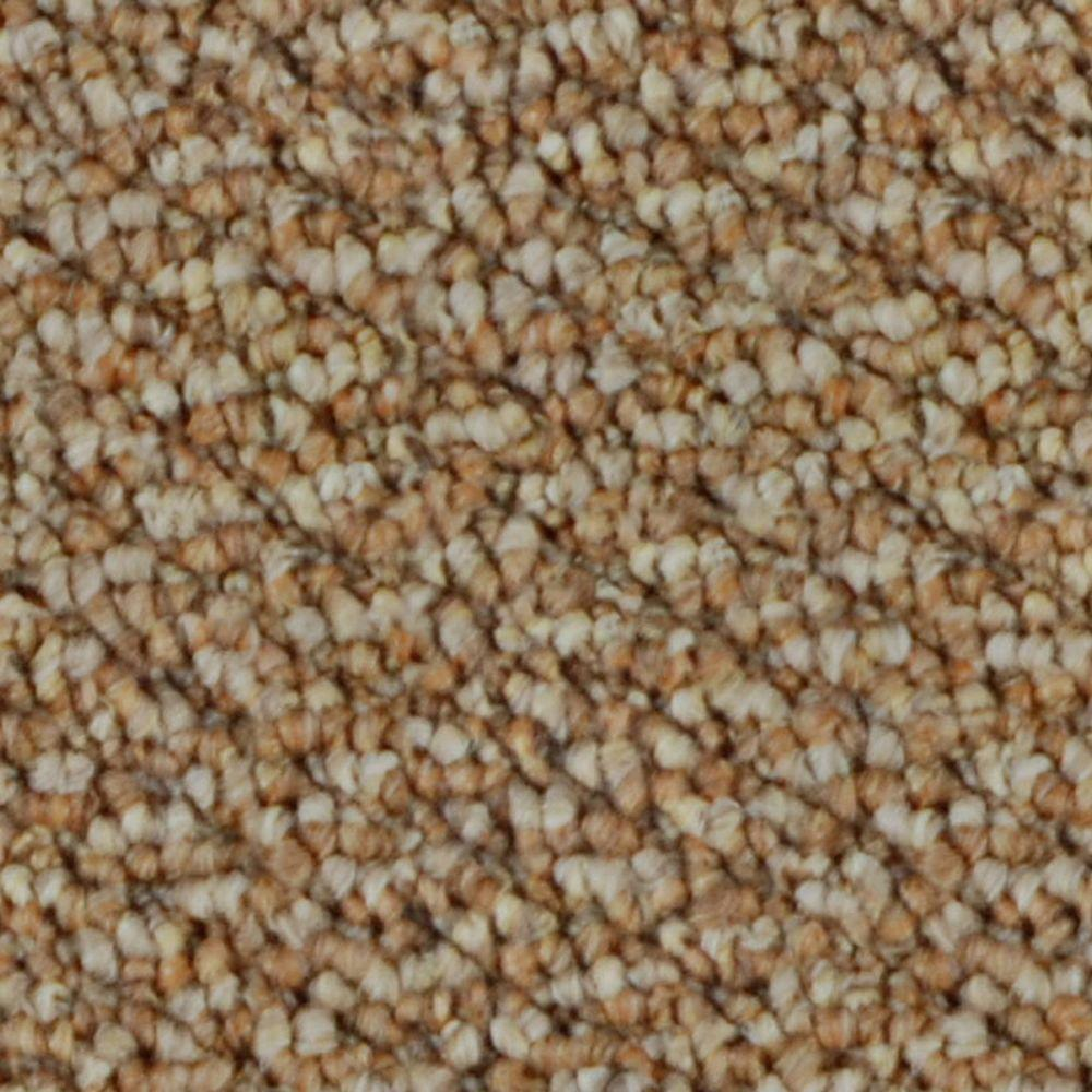 TrafficMASTER After Hours - Color Prairie 12 ft. Carpet