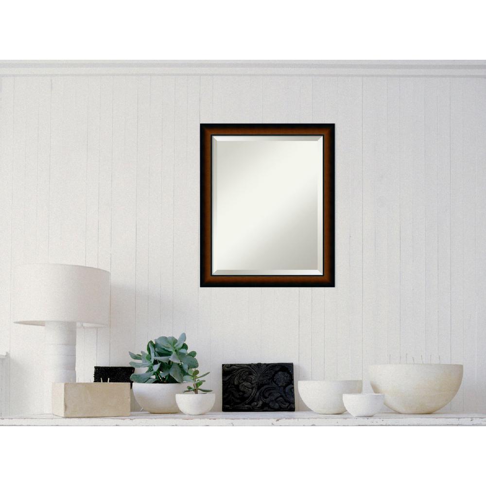 Sheffield Walnut Wood 19 in. W x 23 in. H Traditional Framed Mirror