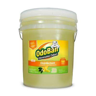 5 Gal. Citrus Disinfectant, Laundry and Air Freshener, Mold and Mildew Control, Multi-Purpose Concentrate