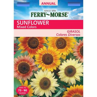 Sunflower Mixed Colors Seed