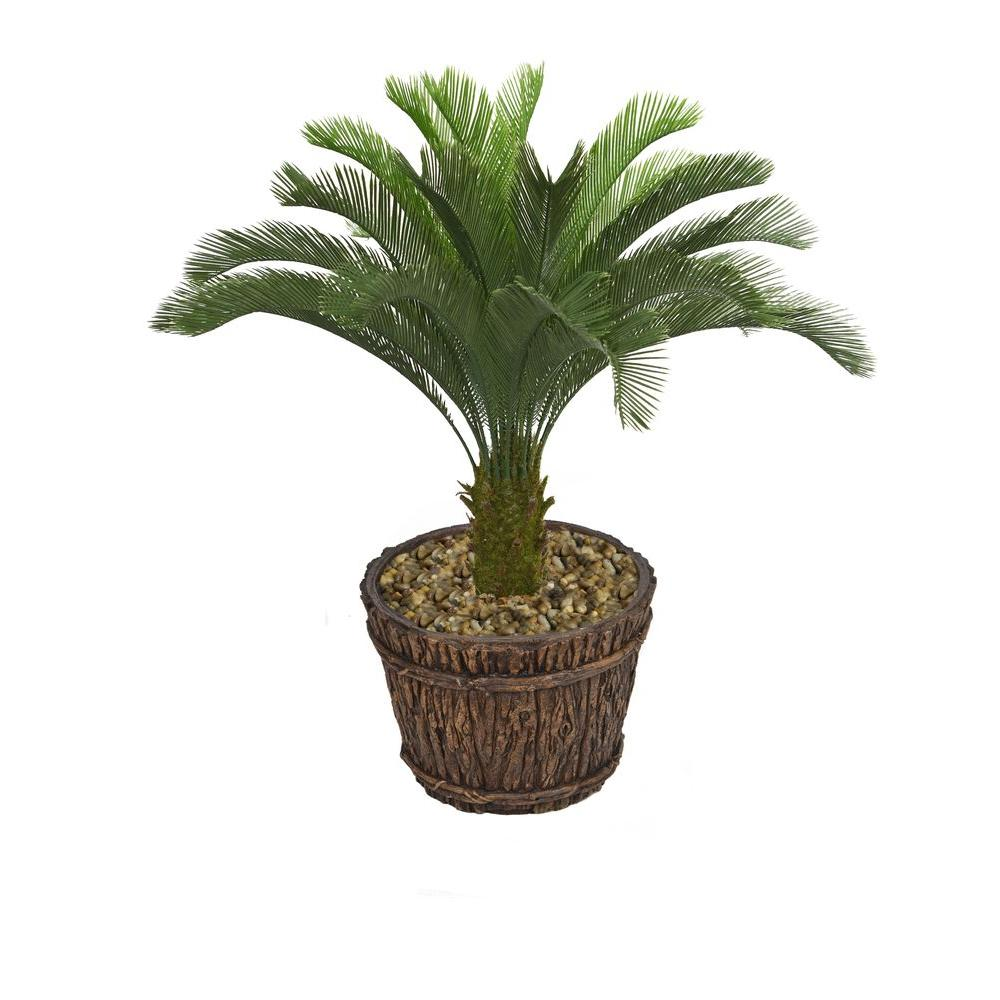 Laura Ashley 56 in. Tall Cycas Palm Tree in Planter, Blacks