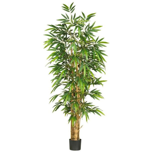 6 ft. Belly Bamboo Silk Tree