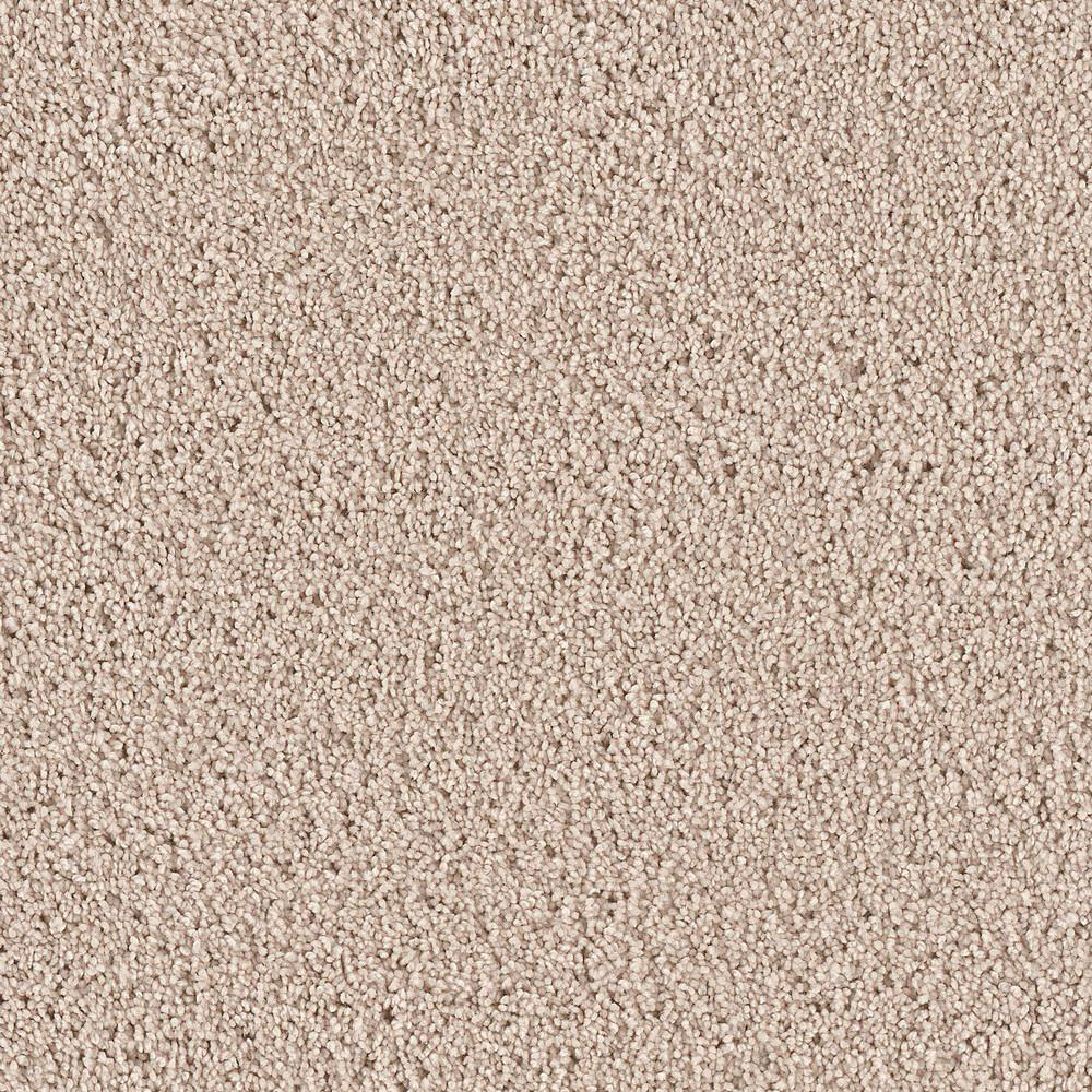 Reno Fiber Internet >> Platinum Plus Carpet Sample - Downshift II - Color Meade Texture 8 in. x 8 in.-EF-327753 - The ...