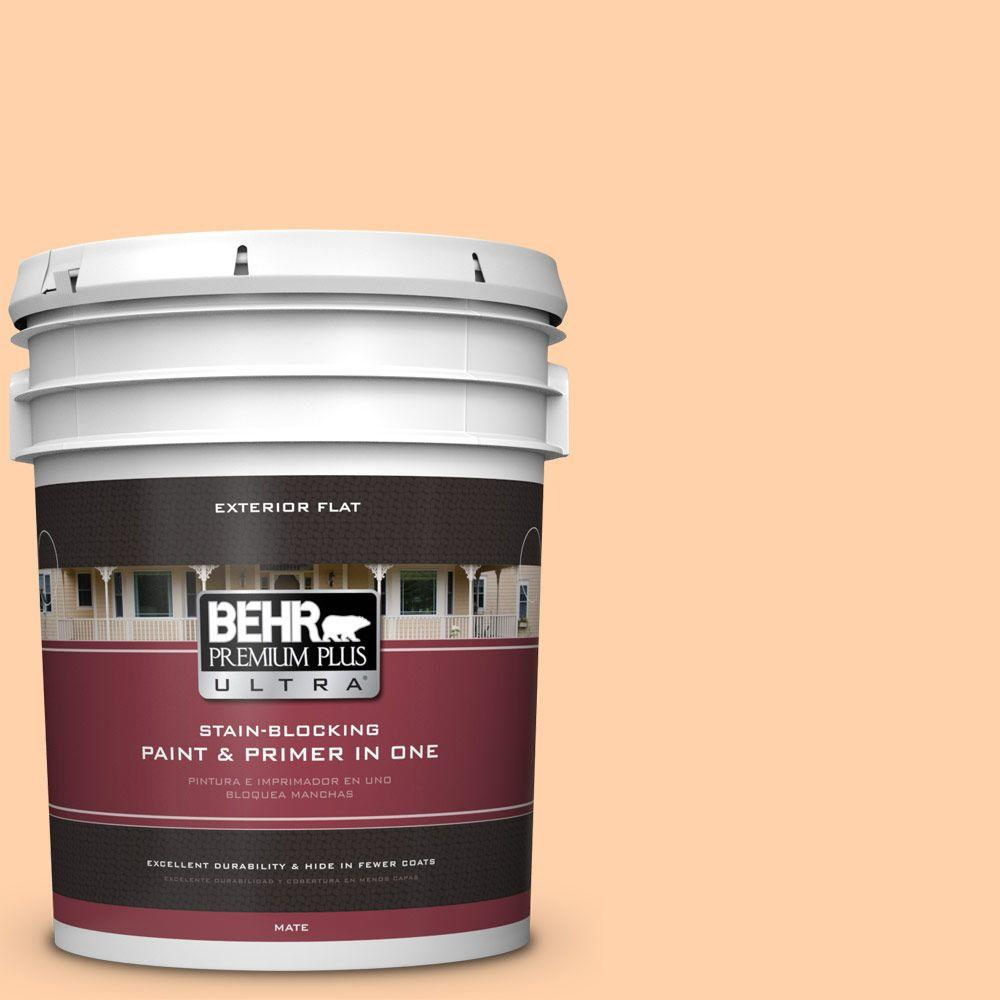 BEHR Premium Plus Ultra 5-gal. #270A-3 Luminary Flat Exterior Paint