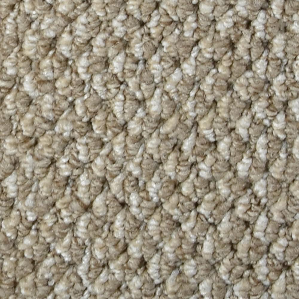 Trafficmaster Carpet Sample Follow Up Color Fenton