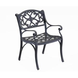 Sanibel Black Stationary Cast Aluminum Outdoor Dining Chair (2-Pack)
