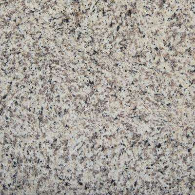 3 in. x 3 in. Granite Countertop Sample in Smokey Pearl