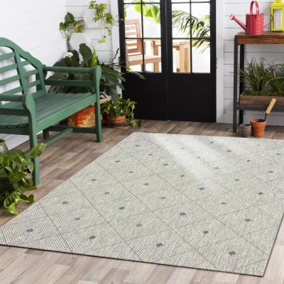 Sun Shower Blue/Gray 8 ft. x 10 ft. Indoor/Outdoor Rectangular Area Rug