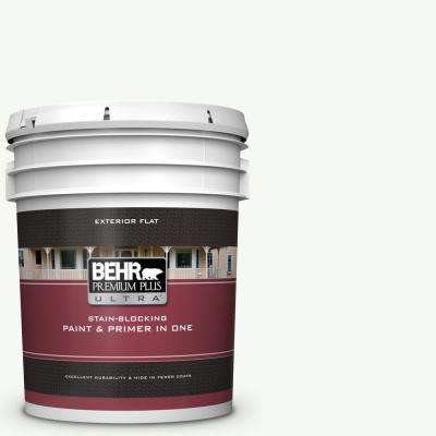 5 gal. #PPU18-06 Ultra Pure White Flat Exterior Paint and Primer in One