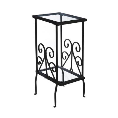 Jasmine 30 in. Black and Clear Metal End Table