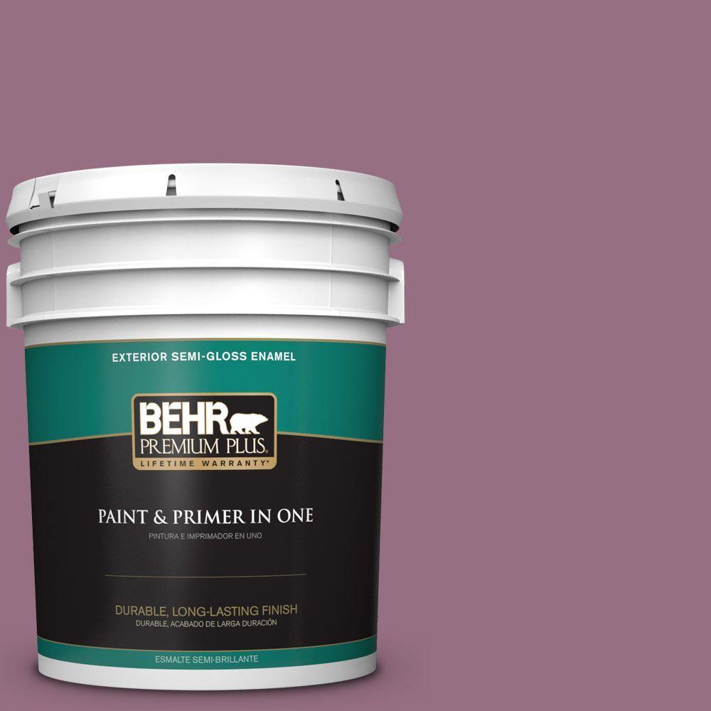 BEHR Premium Plus 5-gal. #690D-6 Meadow Flower Semi-Gloss Enamel Exterior Paint, Purples/Lavenders