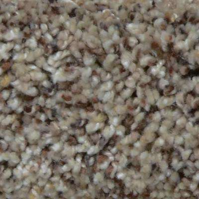 Carpet Sample - Great Moments II (F) - Color Summertime Texture 8 in. x 8 in.
