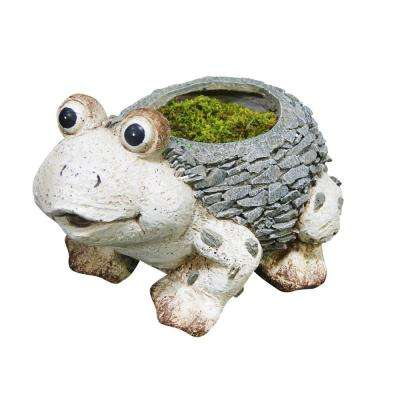 1 in. Magnesia Cement Frog Planter