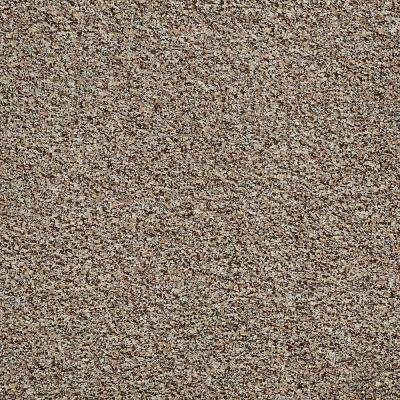Carpet Sample - Toulon - In Color Thornwood Texture 8 in. x 8 in.