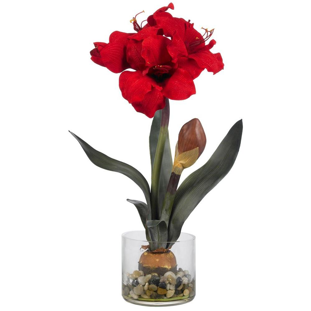 Amaryllis with Vase