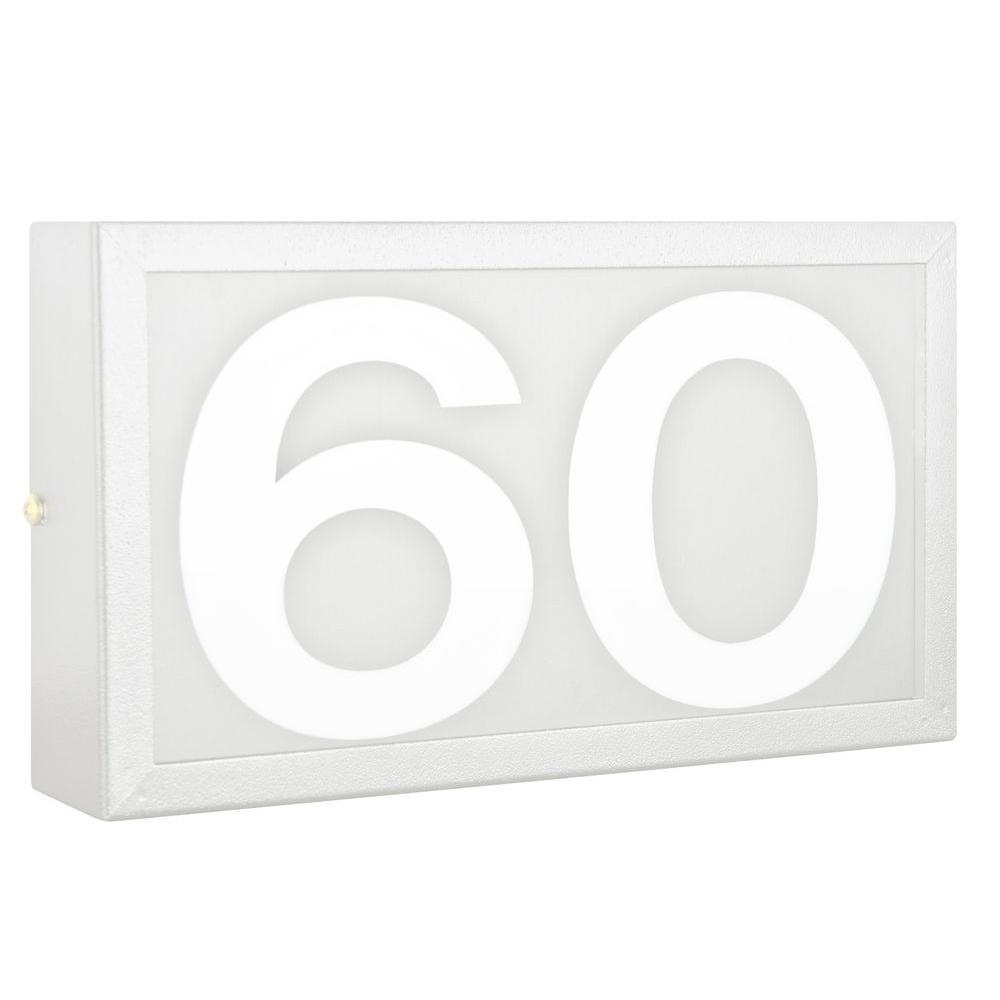 Tegyi 2-Light White Outdoor Address Light
