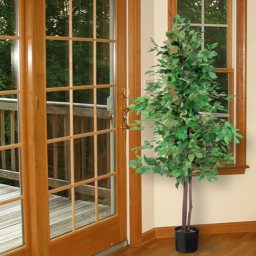 National Tree 5 ft. Ficus Tree, Green