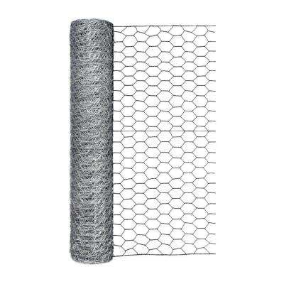 1 in. x 1 ft. x 50 ft. Galvanized Poultry Netting