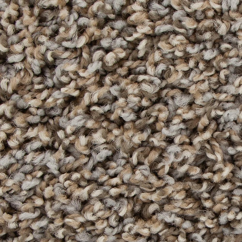 Graymore - Color Ironside Texture 12 ft. Carpet