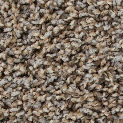 Graymore - Color Ironside Texture 12 ft. Carpet
