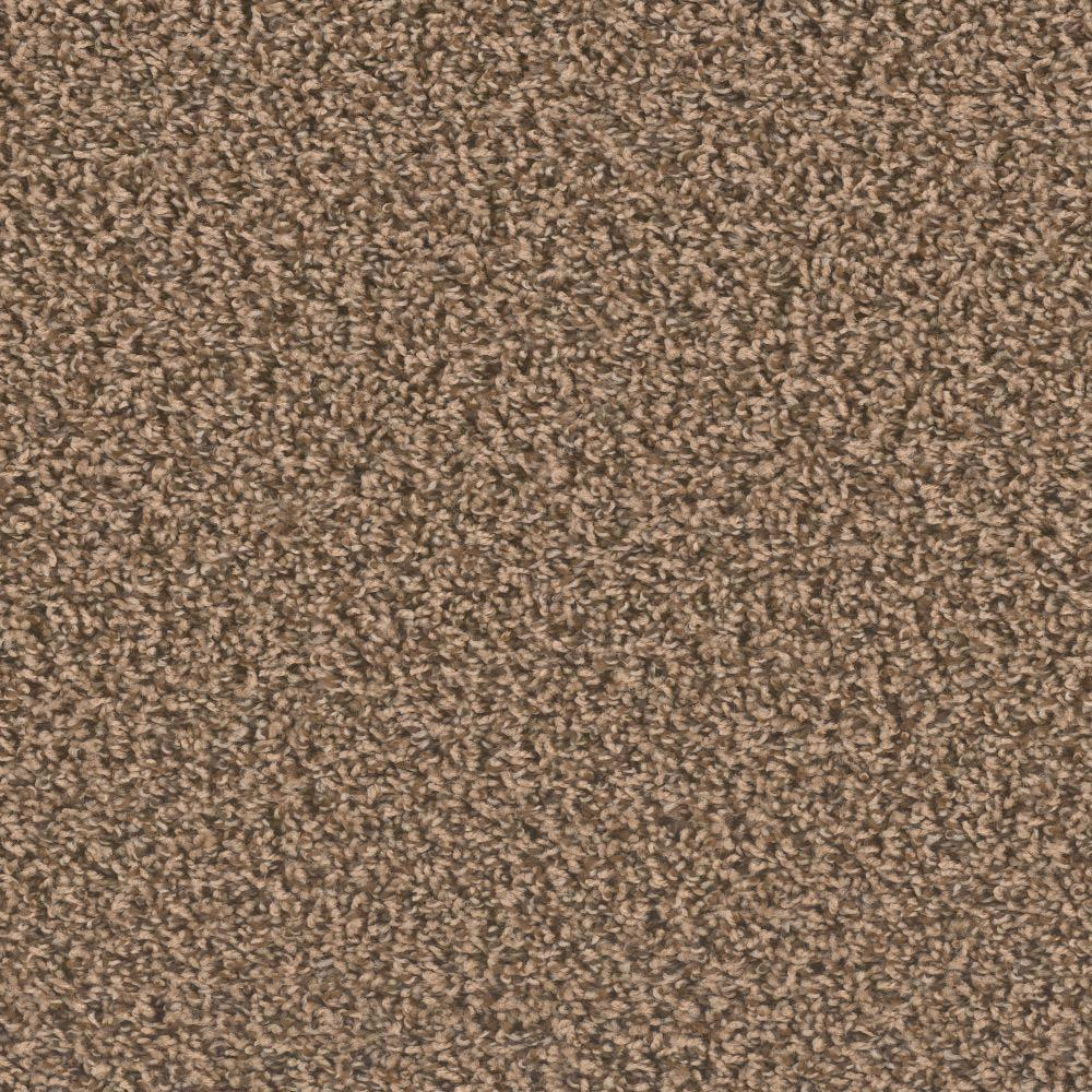 Trafficmaster lucky ii color day texture 12 ft carpet - Lucky color of the day ...