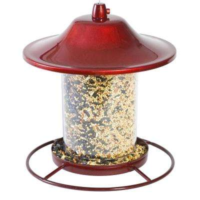 Red Sparkle Panorama Hanging Bird Feeder - 2 lb. Capacity