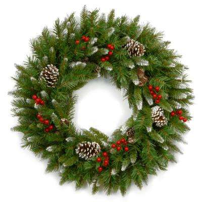 Frosted Berry 24 in. Artificial Wreath