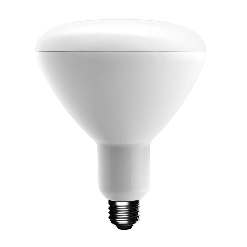 Home Depot Led Light Bulbs: EcoSmart 75-Watt Equivalent BR40 Dimmable LED Light Bulb
