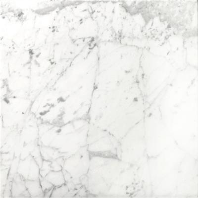 Marble Bianco Gioia Honed 17.99 in. x 17.99 in. Marble Floor and Wall Tile