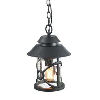 Black 1-Light Outdoor Hanging Lantern Lantern with Glass Shade