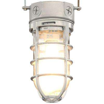 Pewter Incandescent Outdoor Flushmount Vapor Tight Light Fixture