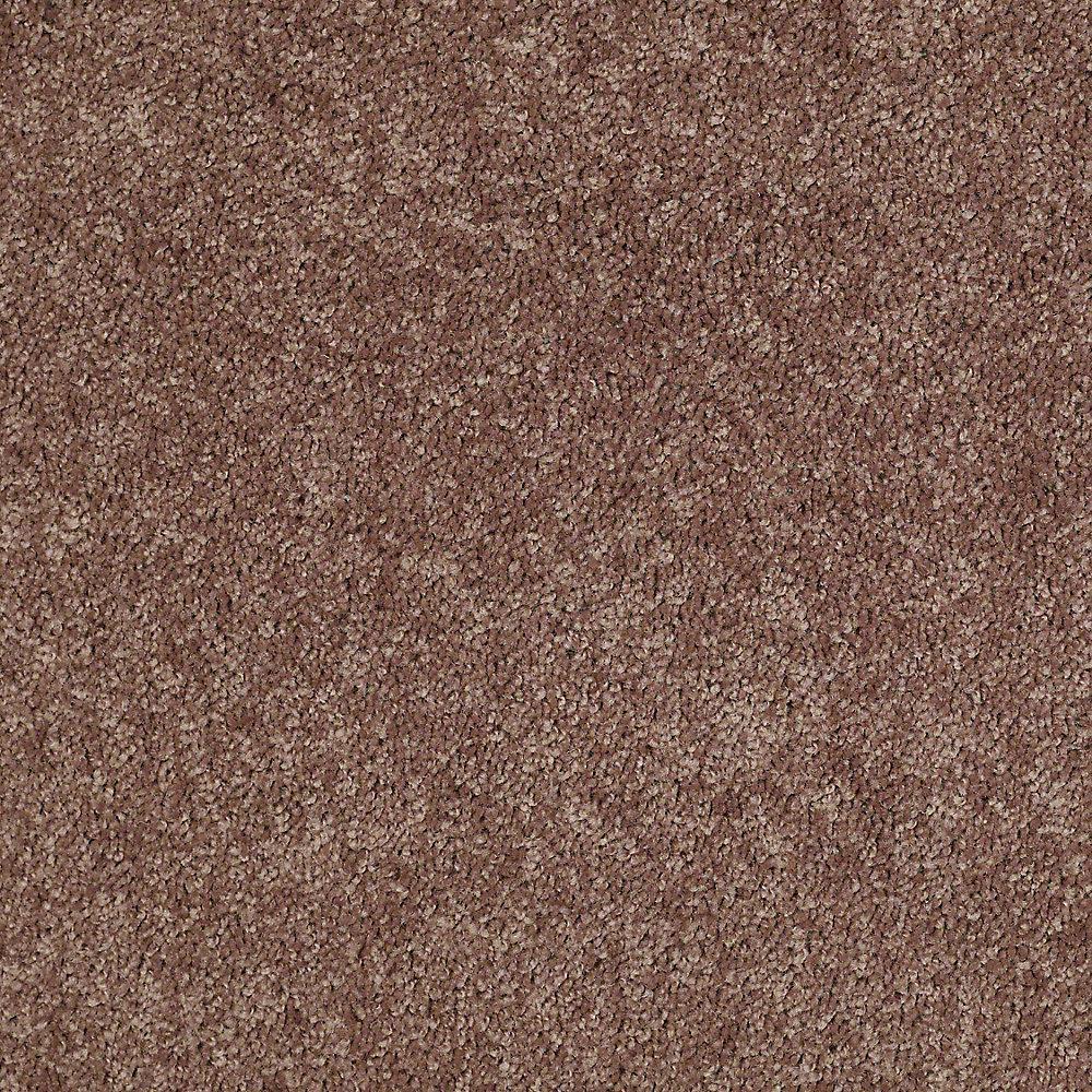 Alpine - Color Adventure Texture 12 ft. Carpet