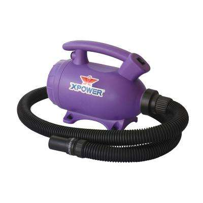 Do-It-Yourself Purple Home Pet Dryer