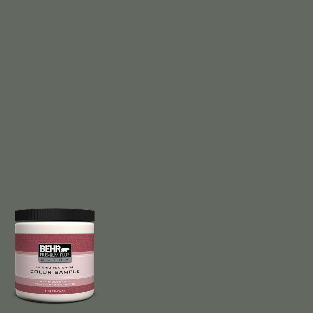 8 oz. #N410-6 Pinecone Hill Interior/Exterior Paint Sample